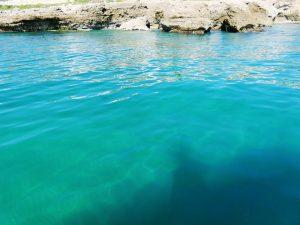 Boat-trips-tours-costa-del-sol-axarquia-torre-del-mar-nerja-maro-costaboattrips-com-10