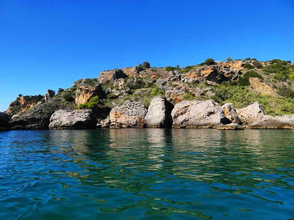 Explore-wildlife-boat-trips-tours-costa-del-sol-axarquia-torre-del-mar-nerja-maro-costaboattrips-com-25