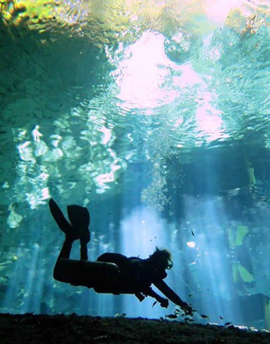 Scuba dive trips Nerja, Torre del Mar, Caleta, Malaga